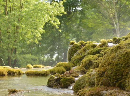 Réouverture du Jardin des Fontaines Pétrifiantes : nos mesures sanitaires